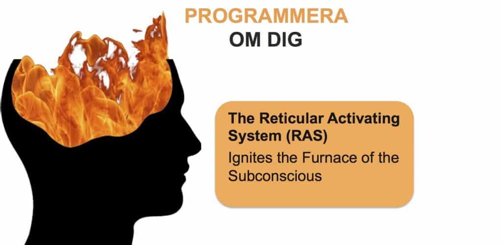 RAS - Programmera Om Dig