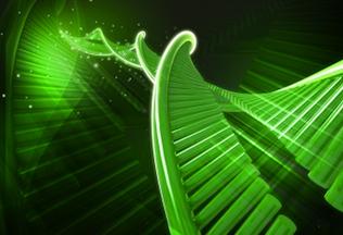 Epigenetisk Forskning – Gratis Rapport