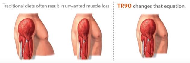 TR90 muskler